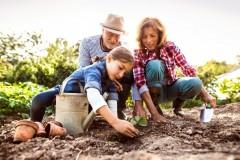 Narzędzia i akcesoria ogrodnicze, które musisz mieć na wiosnę